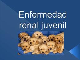 Enfermedad renal juvenil