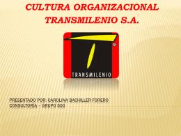 Carolina bachiller forero Consultoría * grupo 500