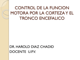 control de la funcion motora por la corteza y el tronco encefalico