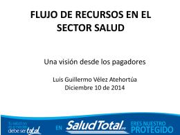 PANEL:FLUJO DE RECURSOS EN EL SECTOR SALUD