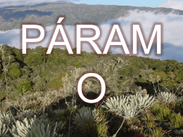PÁRAMO - CorpoUmanowiki