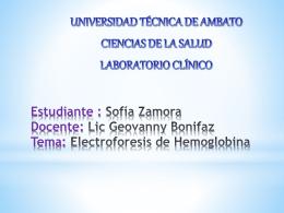 Estudiante : Sofía Zamora Docente: Lic Geovanny Bonifaz Tema