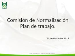Comisión de Normalización