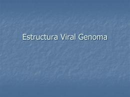 Estructura Viral Genoma