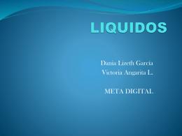 LIQUIDOS - ParqueSoft