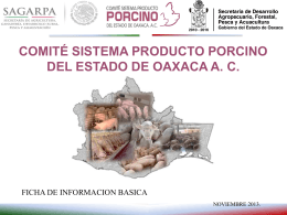 Oaxaca - Sistema Porcinos