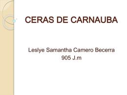 CERAS DE CARNAUBA