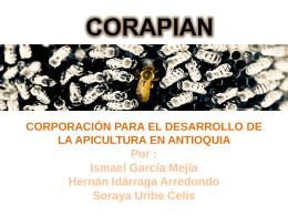 CORAPIAN - Corporación para el Desarrollo de la Apicultura en