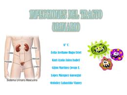 Infecciones de Vías Urinarias - Carpe Diem – Cogito ergo sum