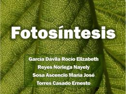Fotosíntesis - FotosintesisTicCiencia