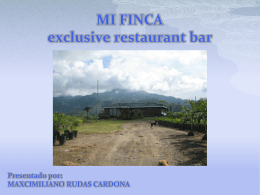 MI FINCA exclusive restaurant bar