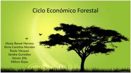 Ciclo Económico Forestal