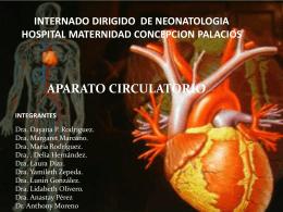 presentacion circulacion pulmonar definitivo