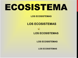 ecosistema 6 - WordPress.com