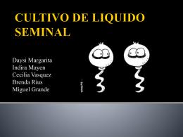 ¿Qué es el cultivo de liquido seminal?