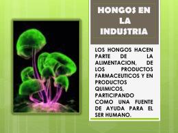 HONGOS COMESTIBLES