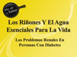 Los Riñones - Beyond Sabor