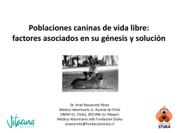 La problemática de las poblaciones caninas de vida libre en Chile y