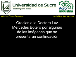 Luz Mercedes Botero - materias primas pecuarias