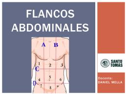 Flancos abdominales.