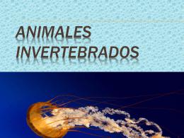 Animales invertebrados - Colegio Hispano Americano