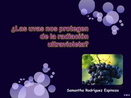 ¿Las uvas nos protegen de la radiación ultravioleta?