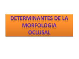 Determinantes de la Morfologia Oclusal.ppt