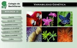 Variabilidad Genética - Colegio de Bachilleres