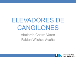 ELEVADORES DE CANGILONES
