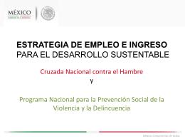Estrategia de empleo e ingreso para el desarrollo