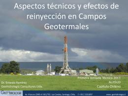 Aspectos técnicos y efectos de reinyección en campos
