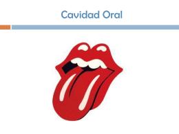 Cavidad Oral - Fisioterapia