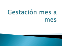 Gestación mes a mes - preparatoriabiologia