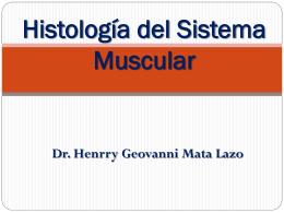 Histología del Sistema Muscular