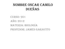 Nombre Oscar camilo Dueñas
