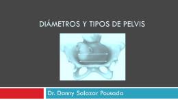 2. Diámetros de la pelvis