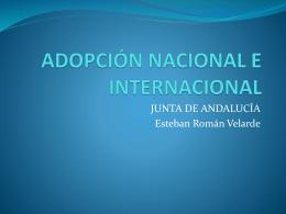 adopción nacional e internacional