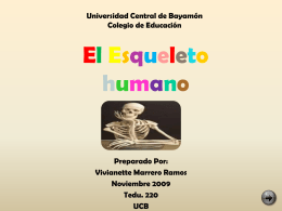Módulo: El Esqueleto Humano