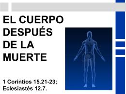 EL CUERPO DESPUÉS DE LA MUERTE - Inicio ICIAR -