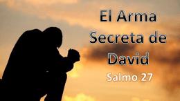 El Arma Secreta de David