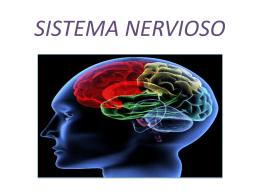 SISTEMA NERVIOSO - osirismoralesblog