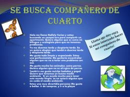 SE BUSCA COMPANERO DE CUARTO