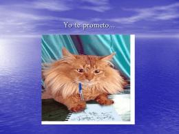Yo te prometo…