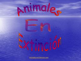 Diapositiva 1 - Animales en Extincion