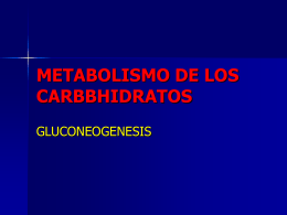METABOLISMO DE LOS CARBBHIDRATOS