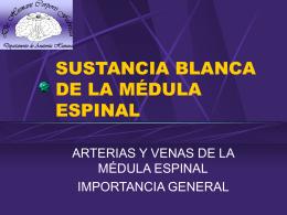 SUSTANCIA BLANCA DE LA MÉDULA ESPINAL