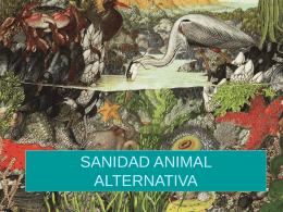 SANIDAD ANIMAL ALTERNATIVA
