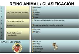 Clasificación de los animales - SII Educa -