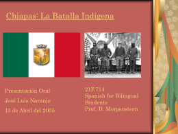 Chiapas: La Batalla Indígena