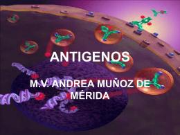 ANTIGENOS - Avindustrias Guatemala